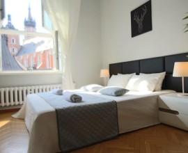 Room 1//Livingroom