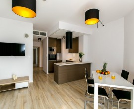 Livingroom with kitchen anex